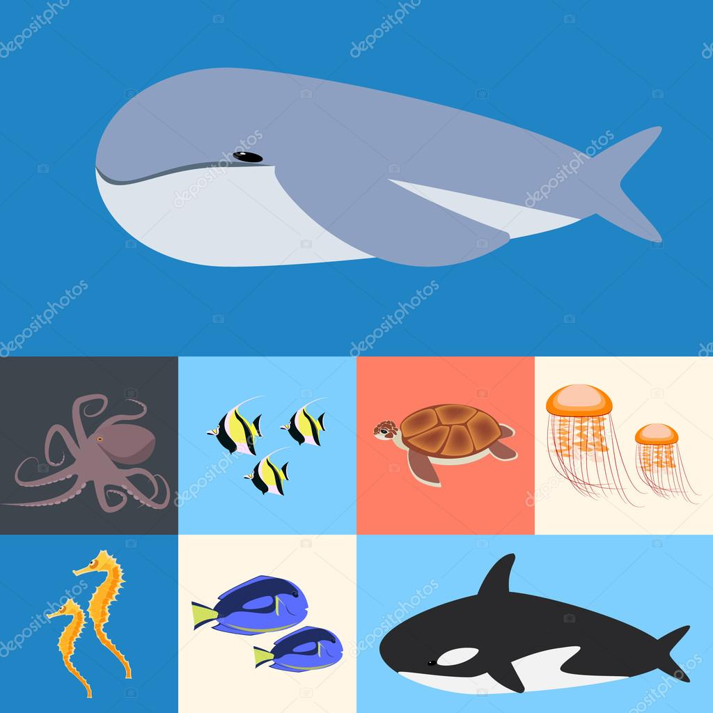 ocean, ocean collection  fish. Flat colored vector illustration
