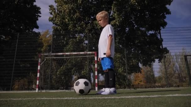 Portrait of a small seven-year-old boy on a soccer field with a soccer ball.