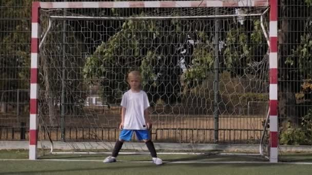 Little boy goalkeeper stands at the gate on the football field.
