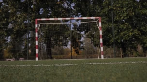 Closeup of little boy soccer player dribbles the ball and stops it near the goal