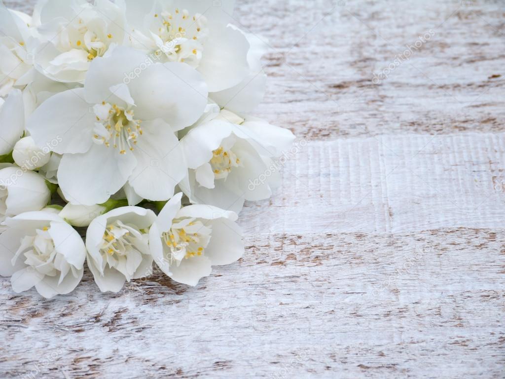 White English dogwood flowers bouquet — Stock Photo © photohampster ...