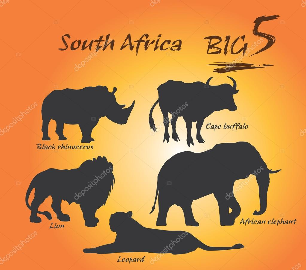 Set with africa animals black white stock vector 169 insima -
