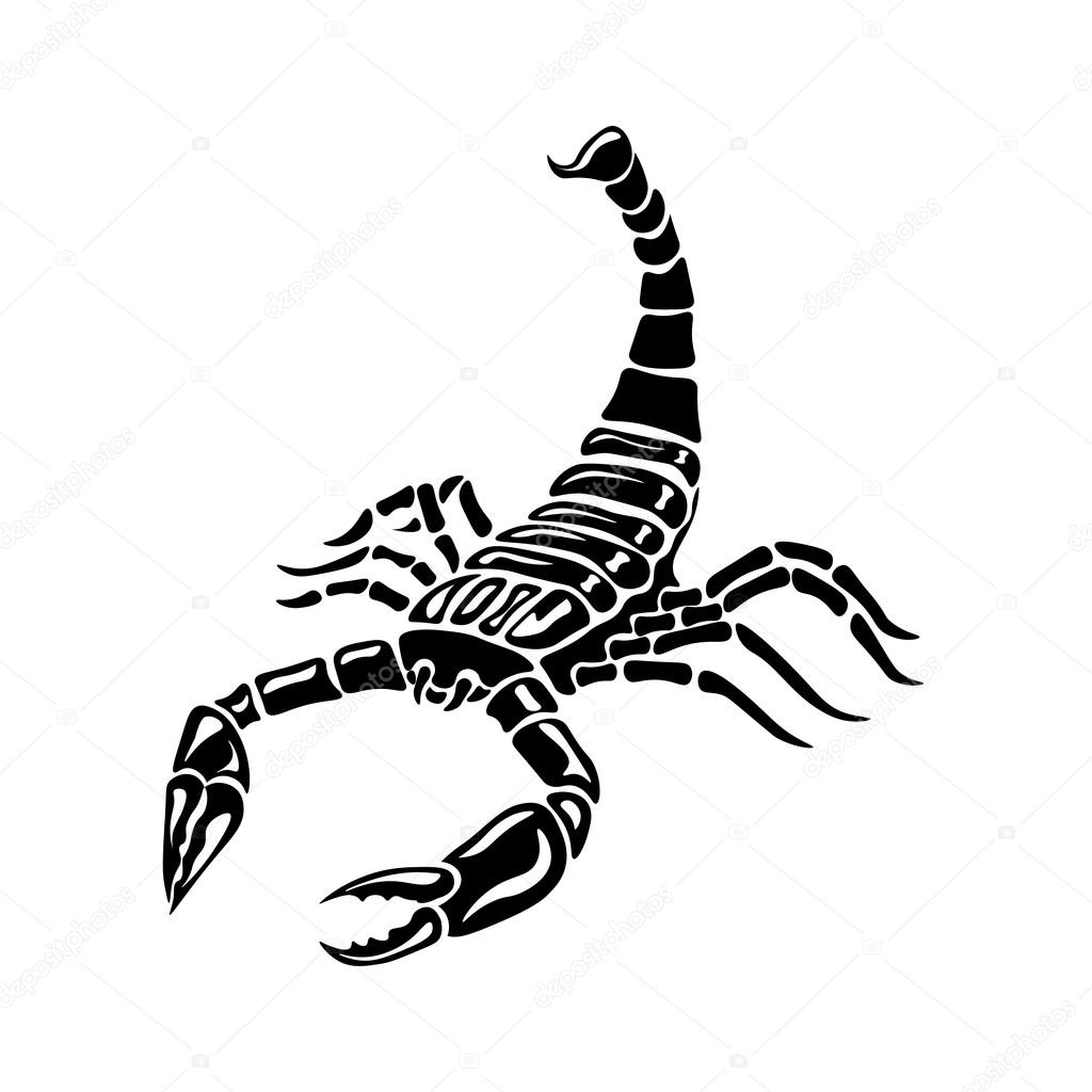 Black and white Scorpion for tattoos, zodiac sign