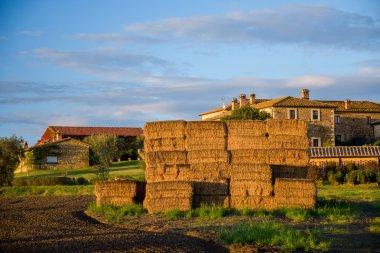 Rural view of haystacks at field