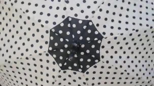 Černobílé polka tečka otevřené deštníky otočky a hypnotizovat.