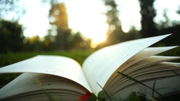 Čtení a myšlení koncepce