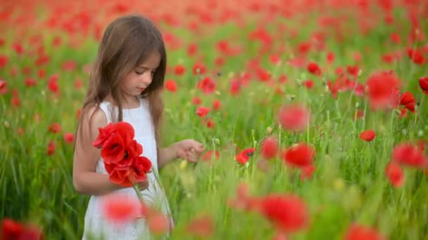 Venkovní portrét. Holčička v šatech sbírá květiny na poli kvetoucích máků.