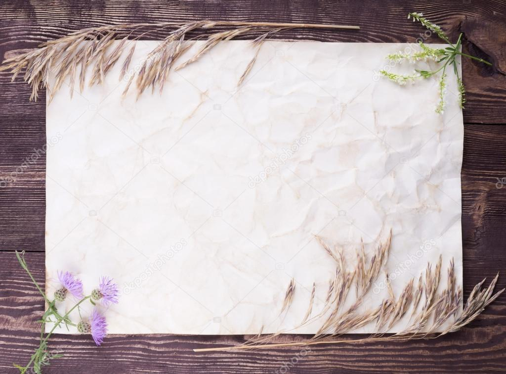 Wild flowers on old paper. Overhead view. Empty space