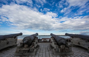 Cannons at the seaside of Tallinn