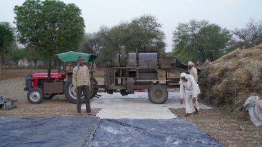 Hintli çiftçiler harman makinesi kullanarak buğday ve kabuğu doğrayan buğday tanelerini ayırıyor..