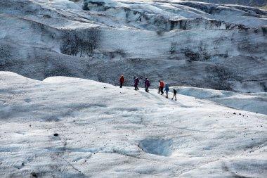 Glacier trekkers walk along