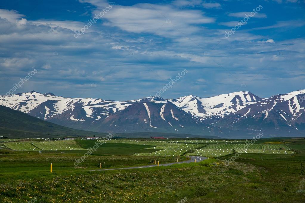 Icelandic landscape with fjords