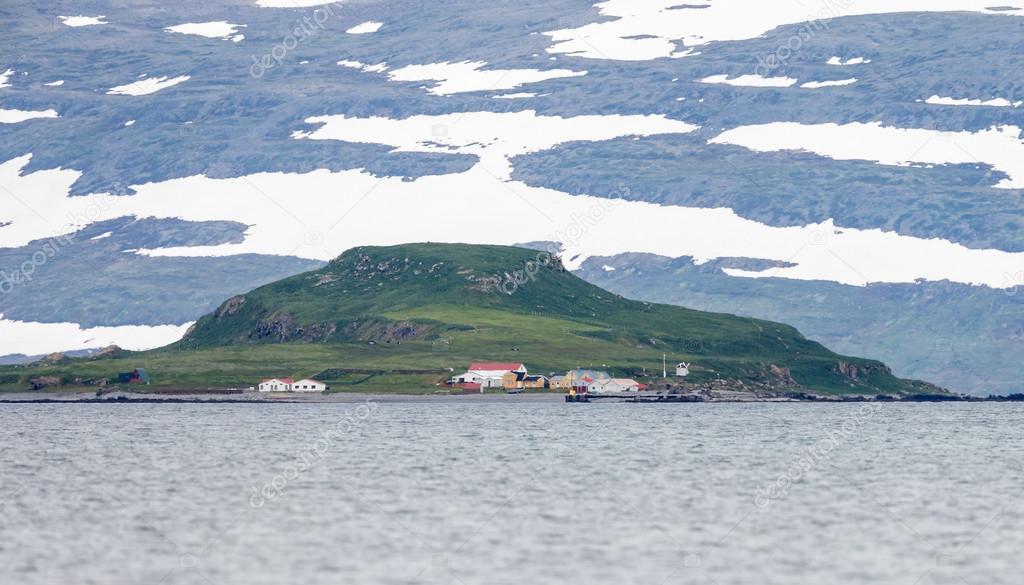 Island Vigur at Iceland