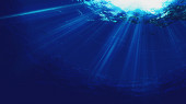 Deep blue sea. Underwater backgrounds for your design