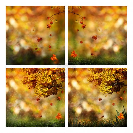 Photo for Set of assorted autumnal seasonal backgrounds for your design - Royalty Free Image