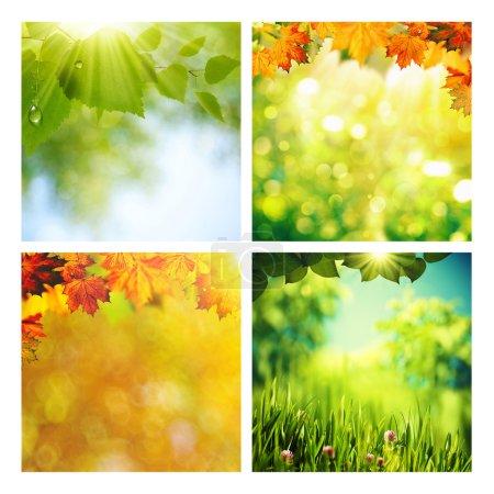 Photo pour Ensemble de décors assortis été et automne pour votre design - image libre de droit