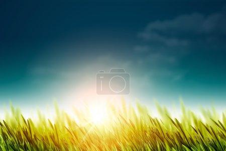 Photo pour Fond normal avec l'herbe verte sous le soleil lumineux d'été - image libre de droit
