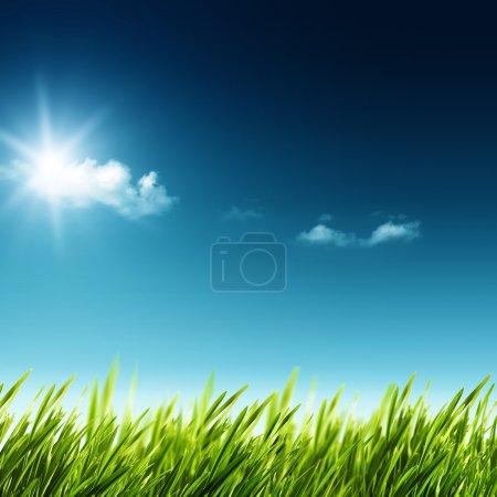 Photo pour Beauté jour d'été. Résumé du paysage naturel avec l'herbe verte et ciel bleu - image libre de droit