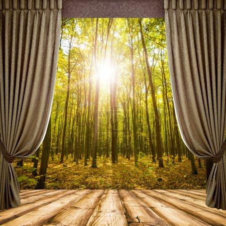 Photo pour Open curtains on the background of the forest autumn background - image libre de droit