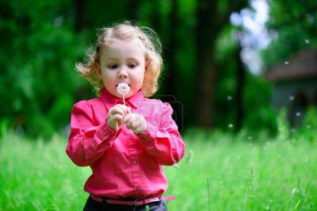 Cute little girl blowing dandelion