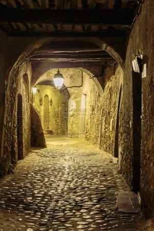 Photo pour Rue étroite dans la vieille ville d'Eze en France la nuit - image libre de droit