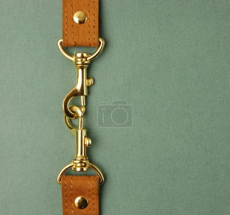 Leather strap with carabiner