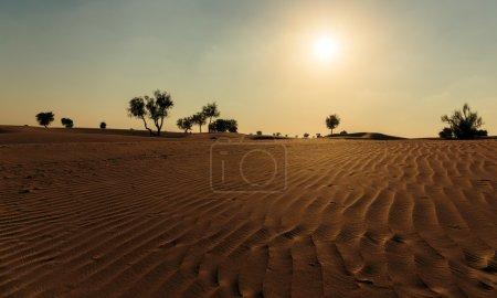 Photo pour Coucher de soleil dans le désert arabe de Dubaï - image libre de droit