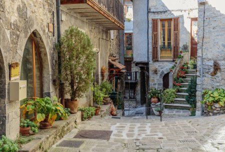 Photo for Night view of narrow street with flowers in the old town Mougins in France. - Royalty Free Image