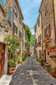 Narrow paved street  with flowers