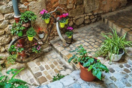 Narrow cobbled street with flowers