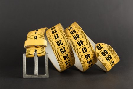 meter slimming belt