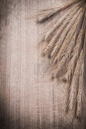Photo pour Bouquet d'épis de seigle de blé sur planche de bois concept de nourriture et boissons - image libre de droit