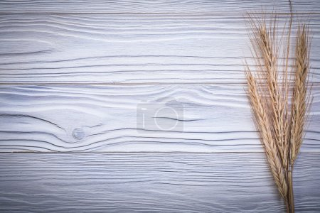 Bunch of ripe wheat and rye ears on wooden board t...