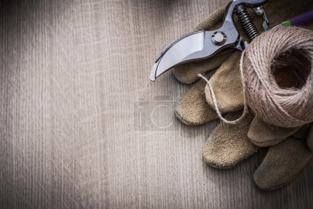 leather gloves, secateurs and hank of twine