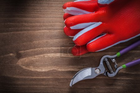 Protective gloves and sharp pruning shears