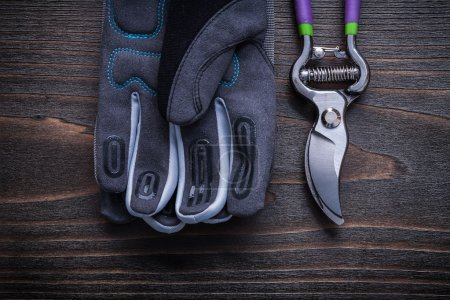 Pruning shears protective gloves