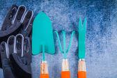 Gardening tools staff gloves