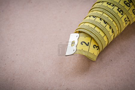 Measuring flexible ruler