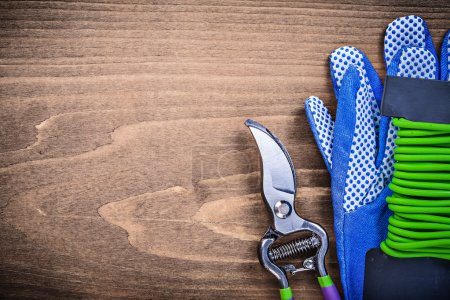 Safety gloves, secateurs and soft tie