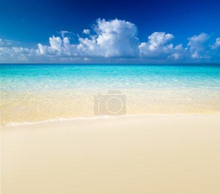 Caribbean sea beach