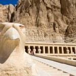 The temple of Hatshepsut near Luxor in Egypt...