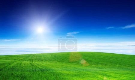 Photo for Green field and blue sky - Royalty Free Image