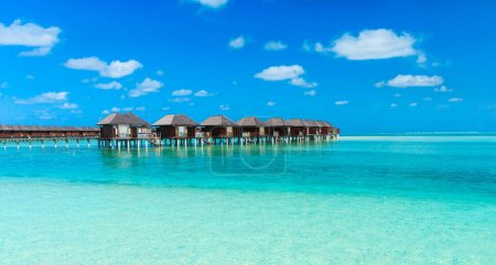 Photo for Tropical beach in Maldives with few palm trees and blue lagoo - Royalty Free Image