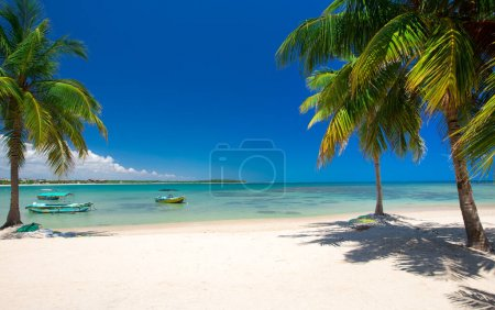 Photo for Tropical beach in Sri Lanka . Summer holiday and vacation concept for tourism. - Royalty Free Image