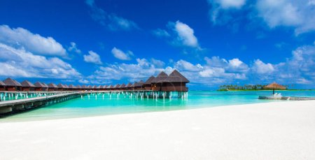 Photo for Tropical beach in Maldives with few palm trees and blue lagoon - Royalty Free Image