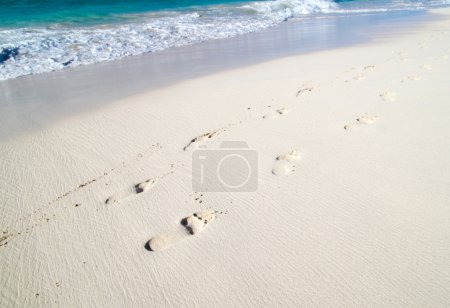 Photo for Footprints in wet sand of beach - Royalty Free Image