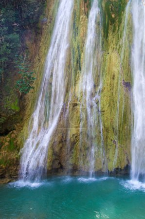 Waterfall  in  green forest
