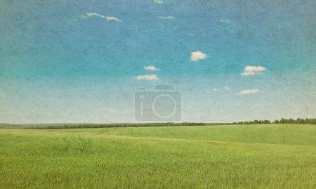 Foto de Campo verde y cielo azul - Imagen libre de derechos