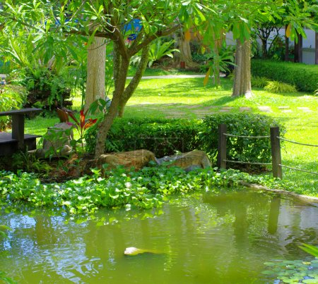 Photo for Spring Asian garden with a pond - Royalty Free Image