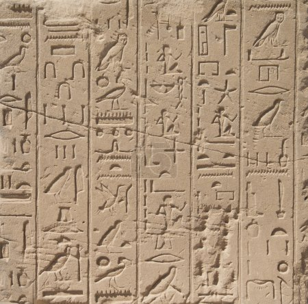 egypt hieroglyphs carved on the stone